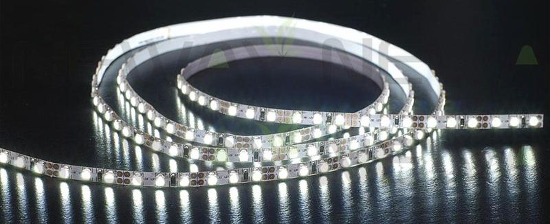 3528 30 LEDs/M LED Flexible Strip Pictures