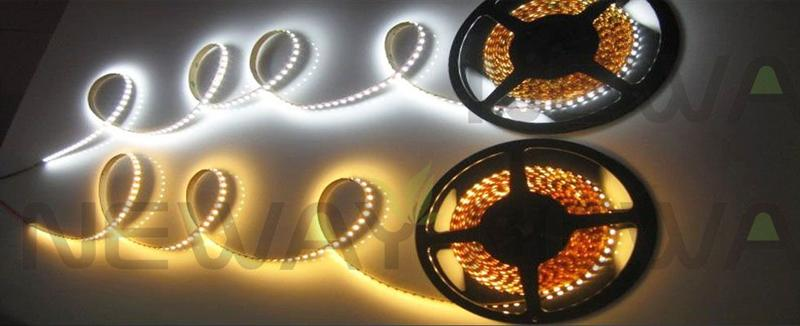 120 LEDs/M 3528 SMD LED Flexible Strip Pictures