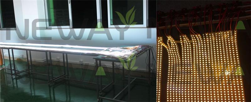 120LED/M SMD5050 LED Flexible Strip Quality Inspection