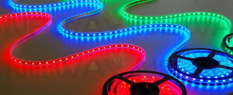 5050 120 LEDs/M RGB LED Strip Pictures