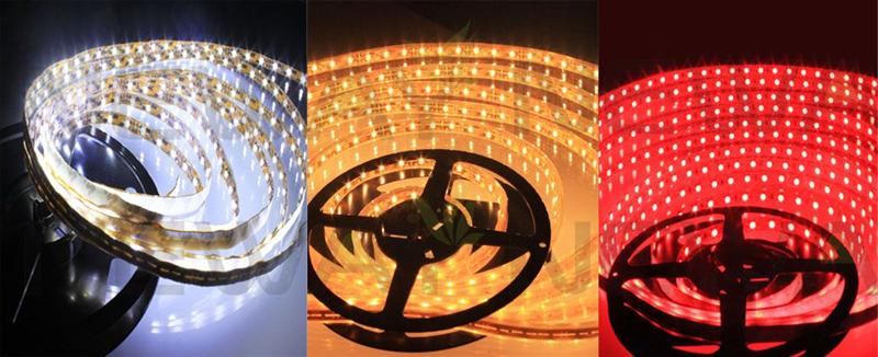 3528 60LED/M Flexible LED Light Strip Kit Pictures